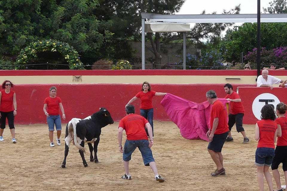 Despedidas de soltera en Murcia